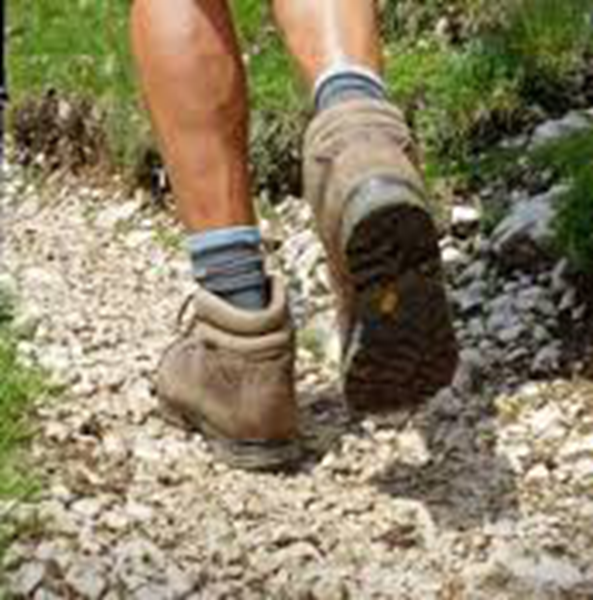 Picture of Walking Boots